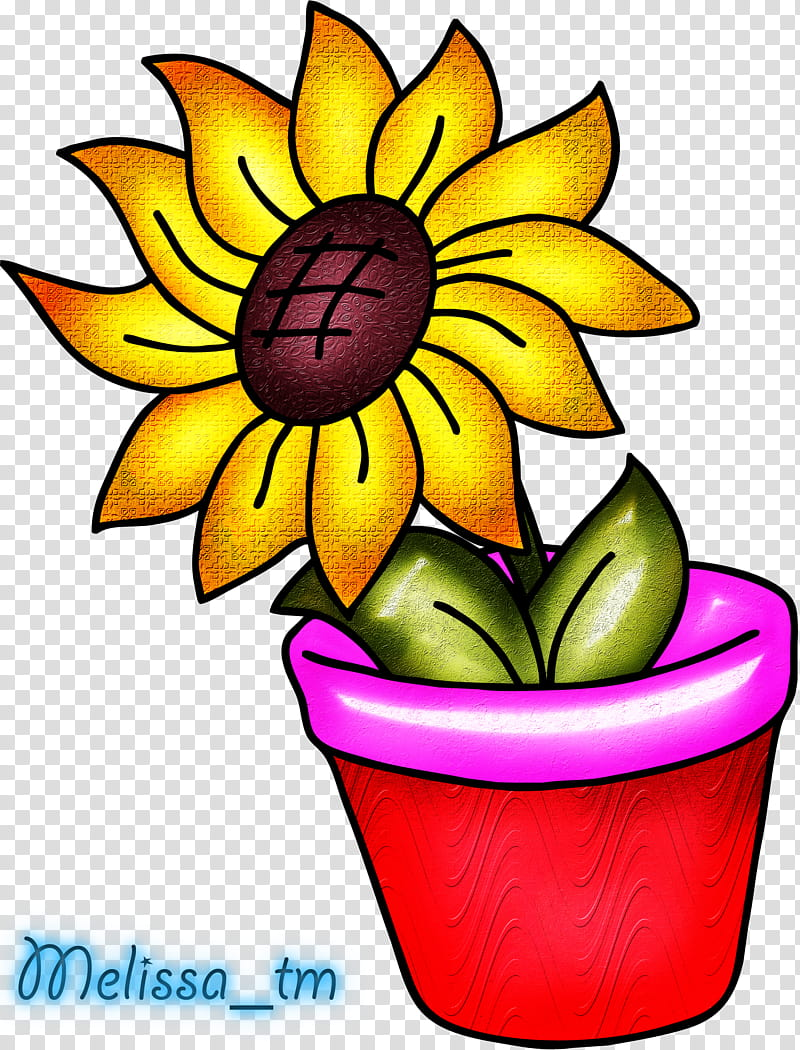 Sunflower in a vase, yellow sunflower illustration.