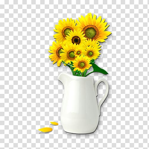 Common sunflower Vase, sunflowers transparent background PNG.