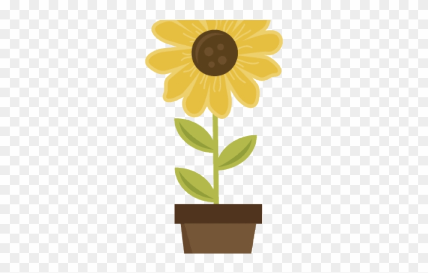 Pot Plant Clipart Sunflower Pot.