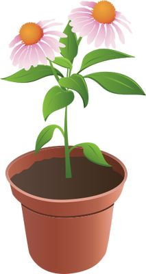 Plant in flower pot [???????????????].png.