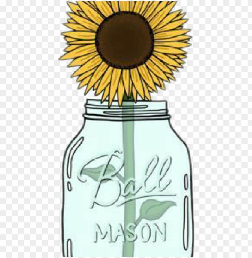 mason jar clipart transparent tumblr.