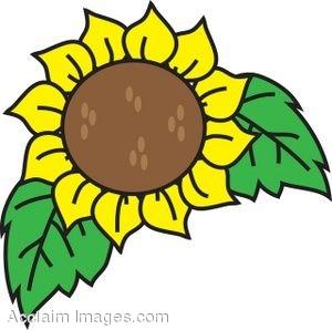Clip Art Illustration of a Sunflower.
