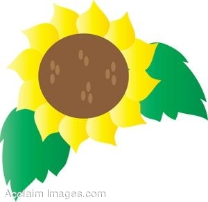 Clipart of a Sunflower Bloom With Leaves.