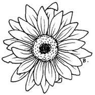 Image result for simple sunflower outline.