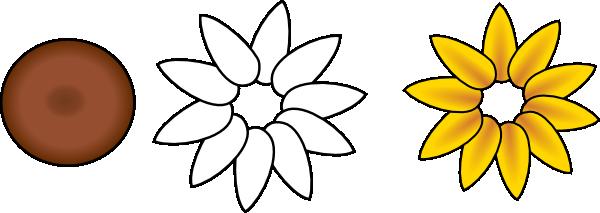 First Layer Flower Petals Clip Art at Clker.com.