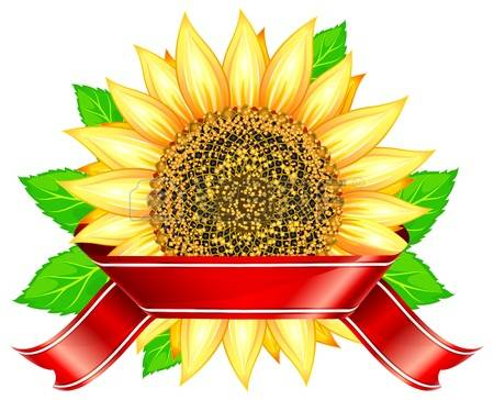 Red Sunflowers Stock Photos & Pictures. Royalty Free Red.