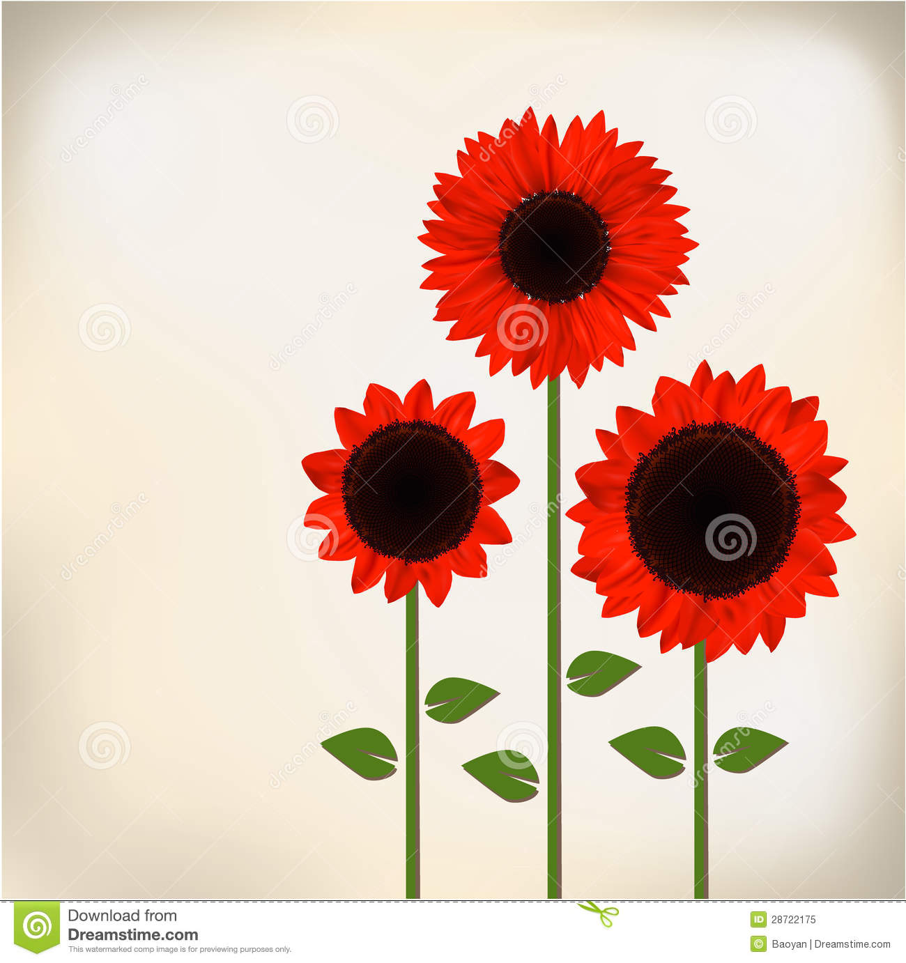 Red Sunflower Royalty Free Stock Photo.