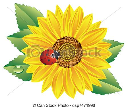 Red sunflower Clip Art and Stock Illustrations. 1,312 Red.