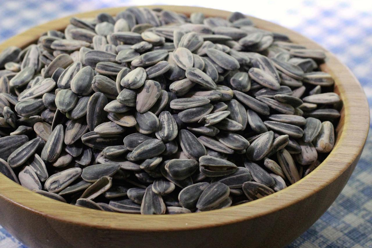 How to Harvest Sunflower Seeds.