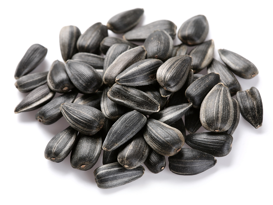 Sunflower Seeds, Sunflower Seeds Suppliers and Manufacturers at.