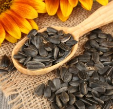 Sunflower Seeds: Benefits, Nutrition & Recipes.