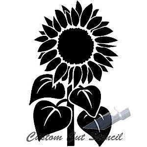 Sunflower Stem.