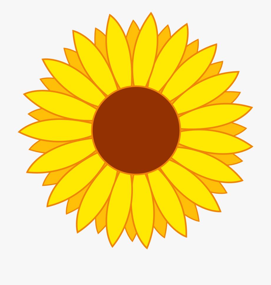 Flower Vector Png Transparent Image.