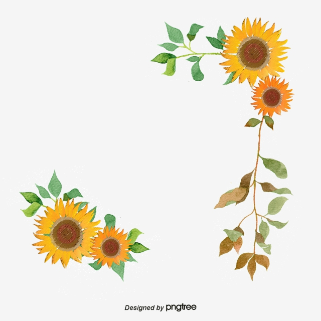 Sunflower Vector, 433 Graphic Resources for Free Download.