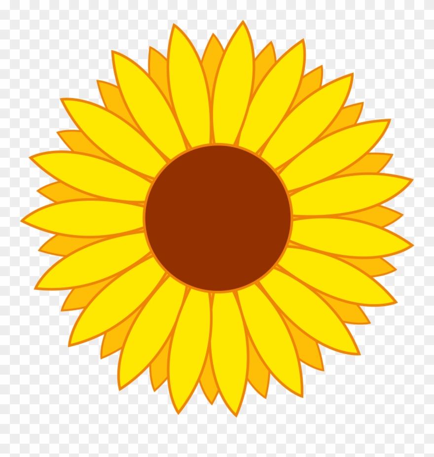 Flower Vector Png Image Sunflower Template, Sunflower.