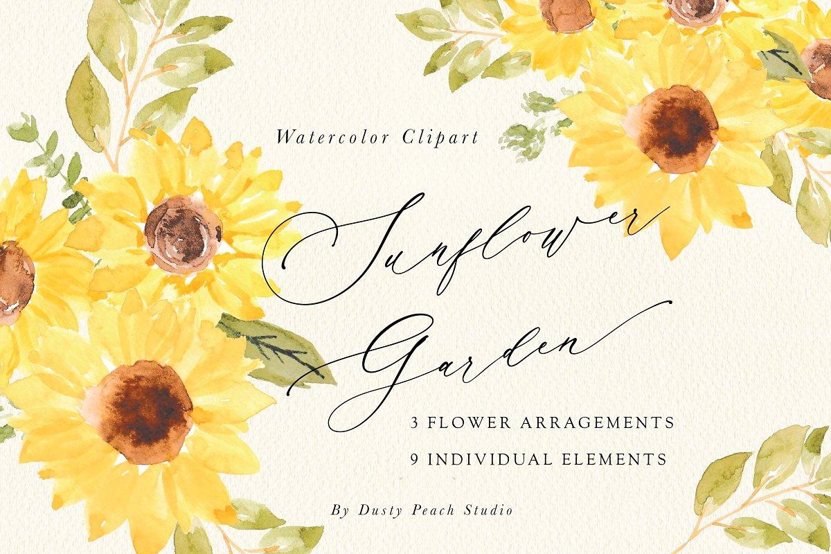Sunflower Garden Watercolor Clipart.