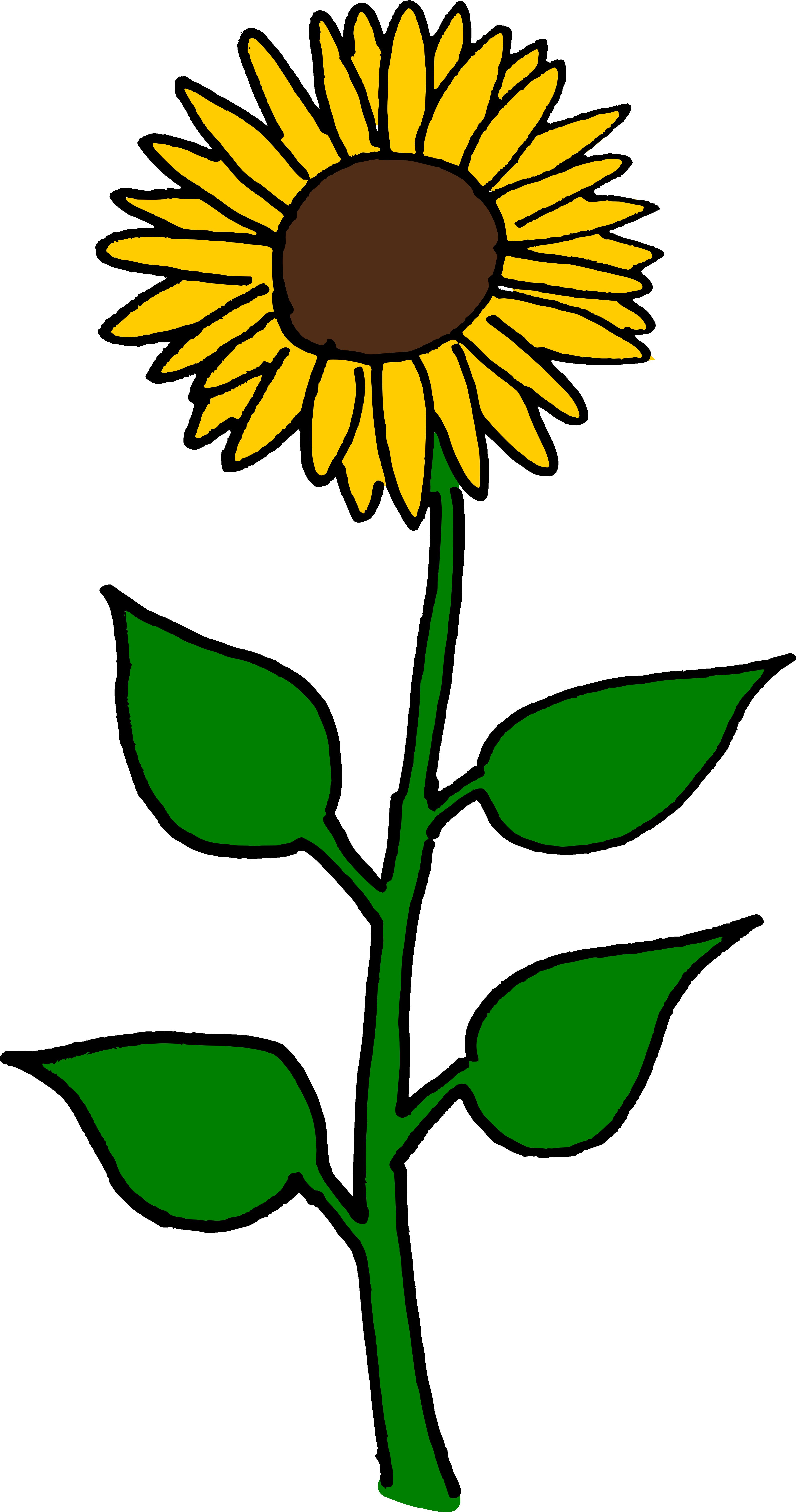Tall Sunflower Clipart.