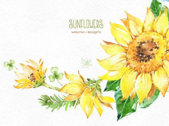 Sunflowers. Wreaths & Bouquets. Watercolor flowers clipart.