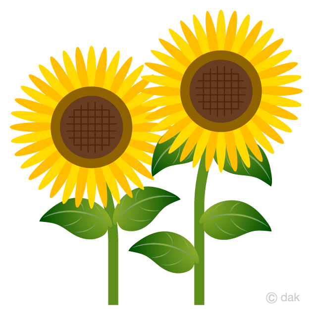 Two Simple Sunflower Clipart Free Picture|Illustoon.