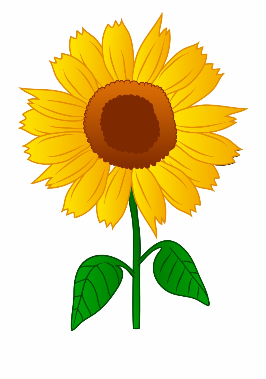 Sunflower Clip Art Free Clipart.
