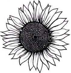 sunflower clipart black and white.