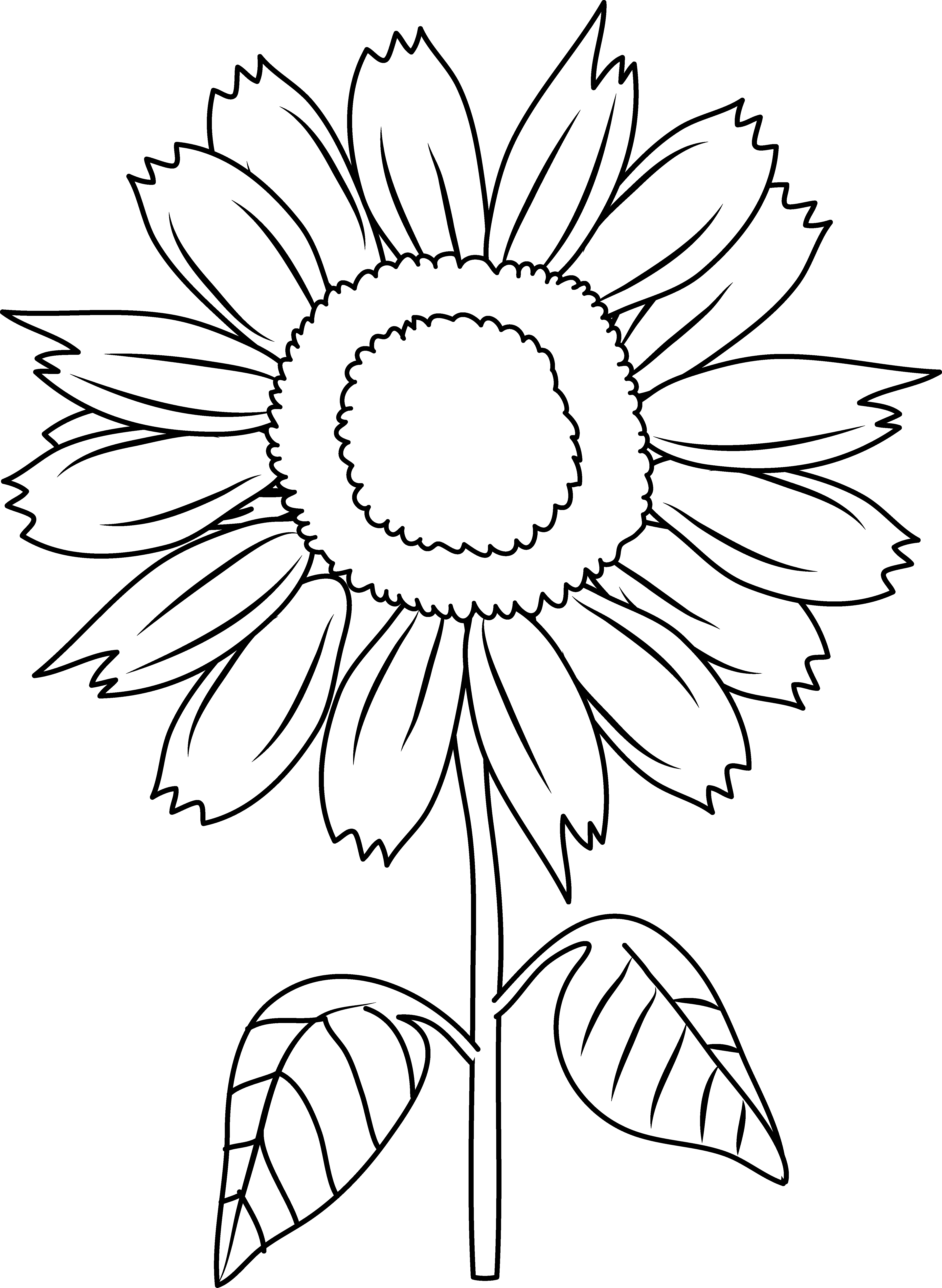 sunflowers clipart to color - Clipground