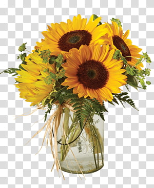 Sunflower Mason Jar transparent background PNG cliparts free.
