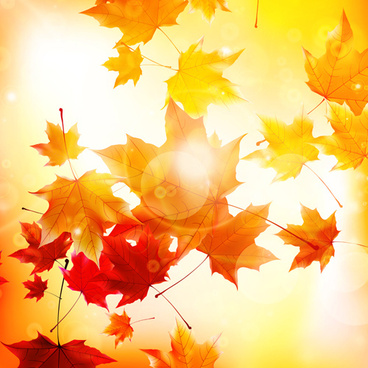 Autumn leaves background clip art free vector download (214,673.