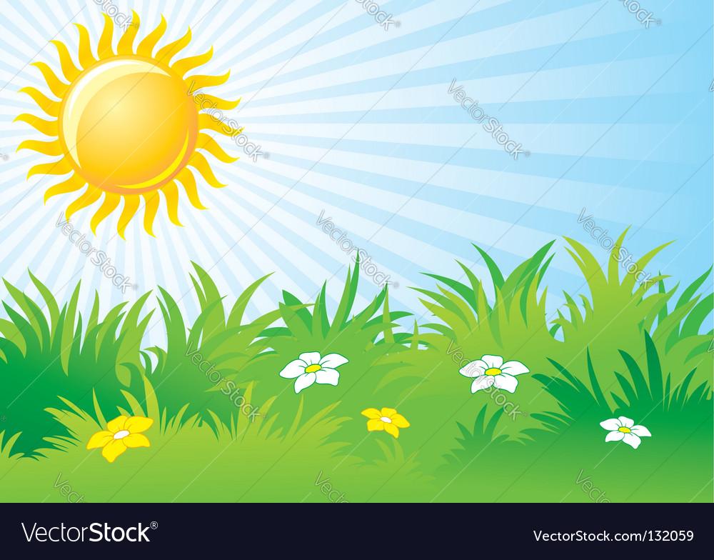 Sunny day background.