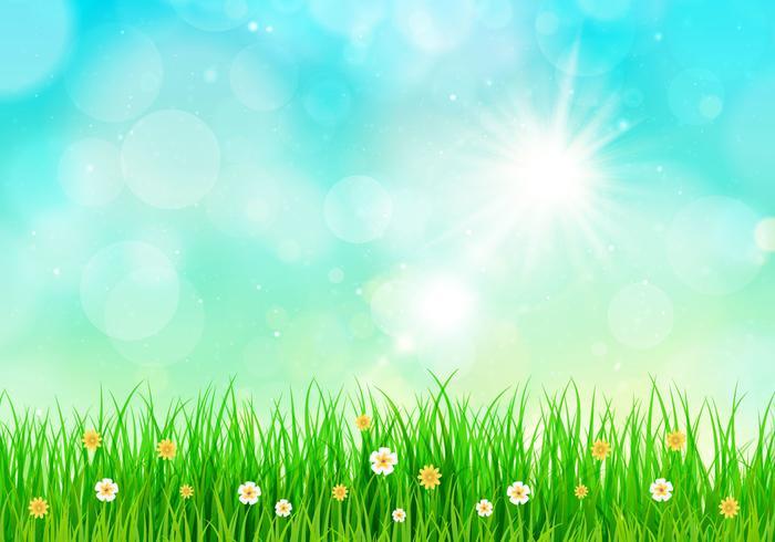 Sunny Sky Spring Background.