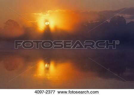 Picture of Lake at sunrise, Swan Lake, Swan Lake Nature Sanctuary.