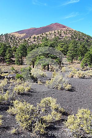 Sunset Crater Volcanic Cinder Cone Near Flagstaff, Arizona Stock.