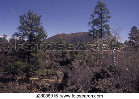 Stock Images of Flagstaff, AZ, Arizona, Sunset Crater Volcano.
