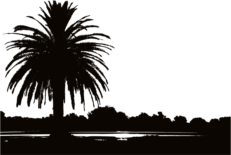 Palm Tree Silhouette clipart.