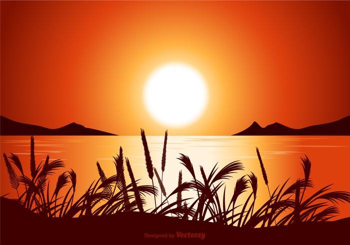 Vector Sunset Seascape Illustration.