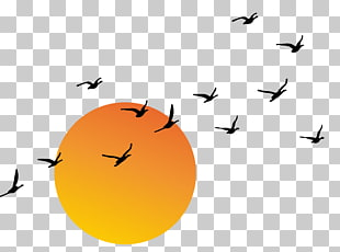 407 sunset Vector PNG cliparts for free download.
