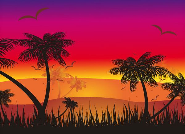 Tropical Sunset Vector.