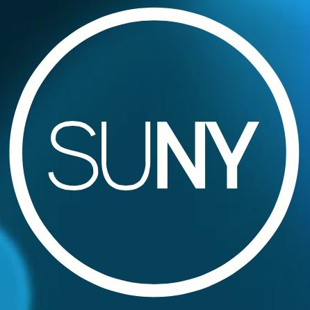 SUNY Chancellor\'s Award for Excellence 2019 • News.