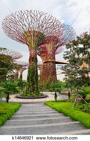 Stock Photography of Super trees in Gardens by the Bay Singapore.