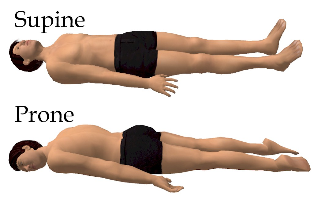 Supine position clipart #15
