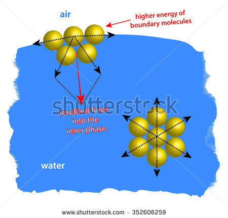Surface Tension Stock Images, Royalty.