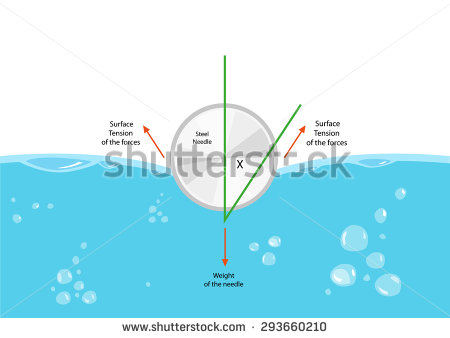 Surface Tension Cross Section Diagram. Editable Clip Art. Stock.