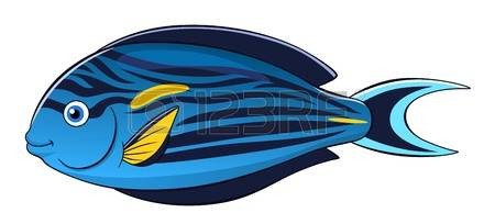 236 Surgeonfish Stock Illustrations, Cliparts And Royalty Free.