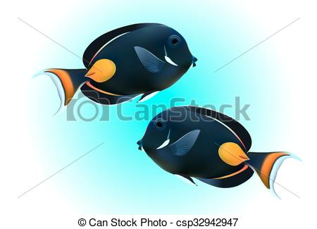 EPS Vector of Achilles Tang or Surgeon Fish csp32942947.