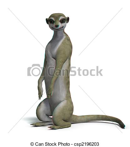 Suricata suricatta Illustrations and Clipart. 27 Suricata.
