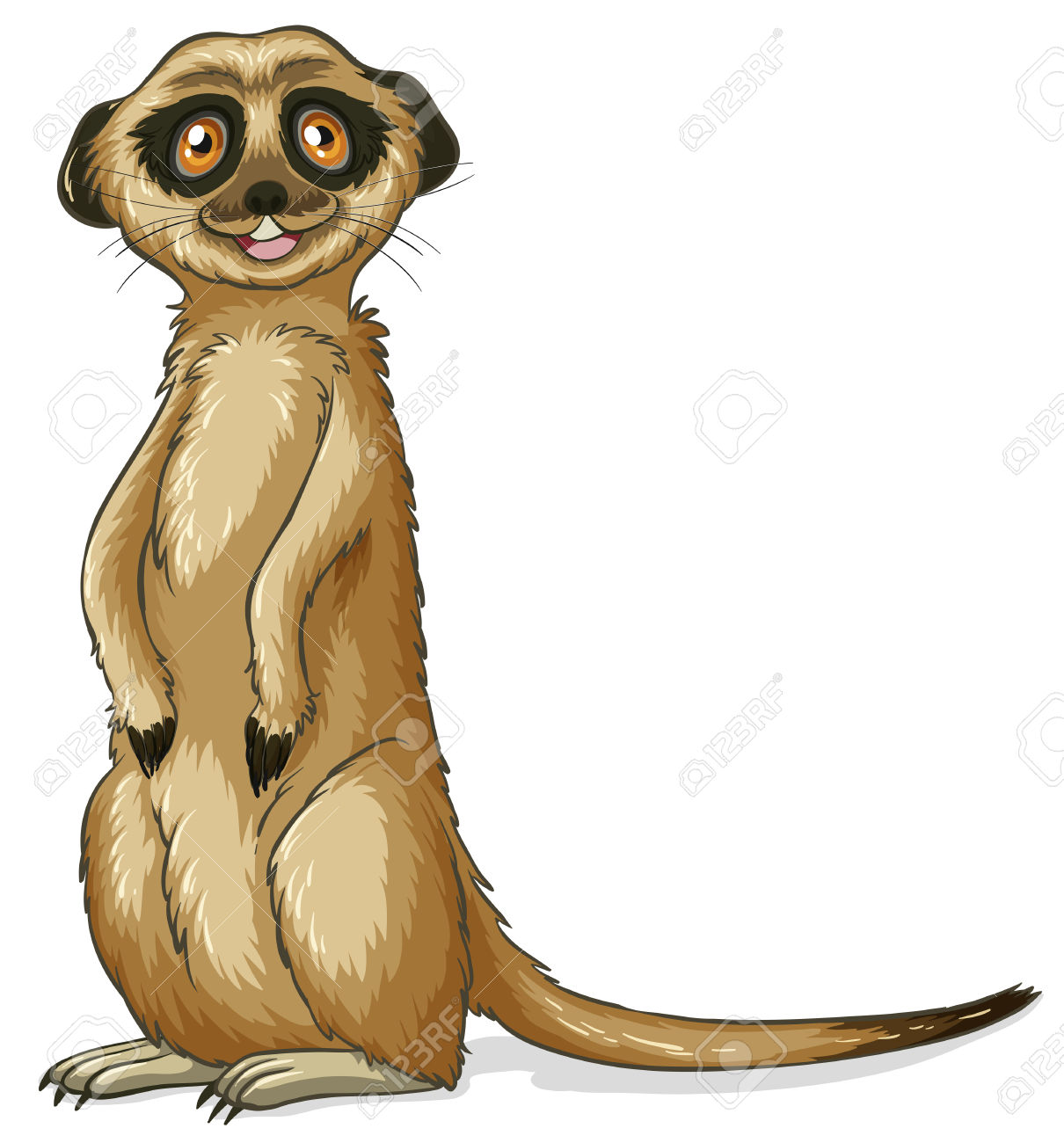 Illustration D'un Gros Plan Suricate Clip Art Libres De Droits.