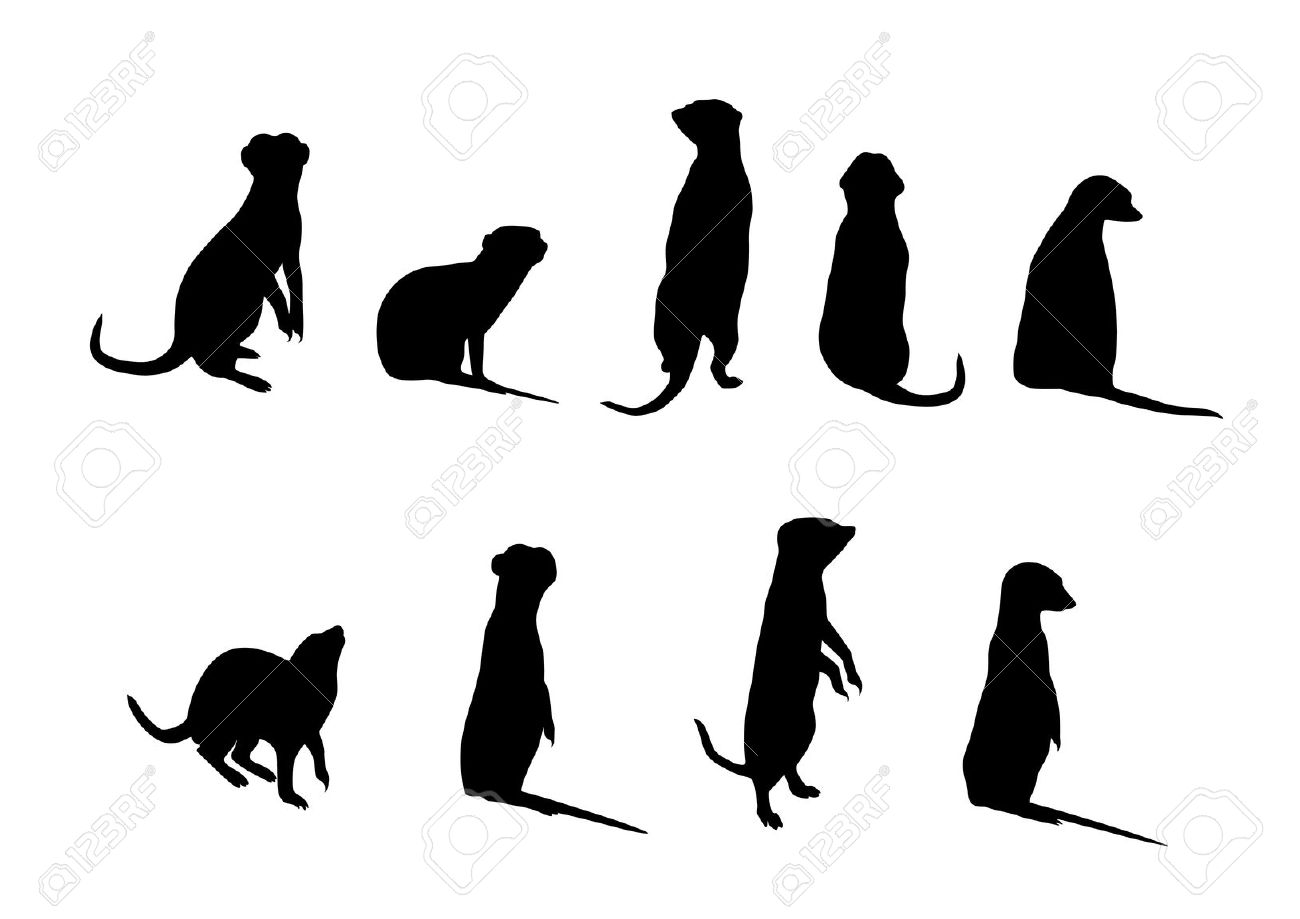 Meerkat Silhouettes (Suricata Suricatta) On White Background.