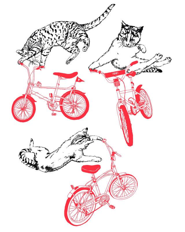 "Redline ""Recon"" 2012 BMX Bike."