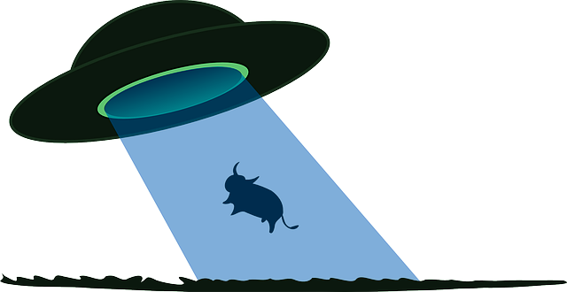 The Orange Orb: UFOs, Fortean Things: Underground Cows.