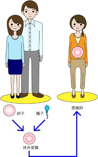 バロン・ベビー 卵子提供・代理出産エージェンシー.